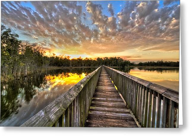 Grassy Waters Evening Greeting Card