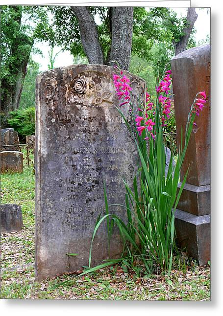 Greeting Card featuring the photograph Grave Stone With Pink Flowers by Jeanne  Woods