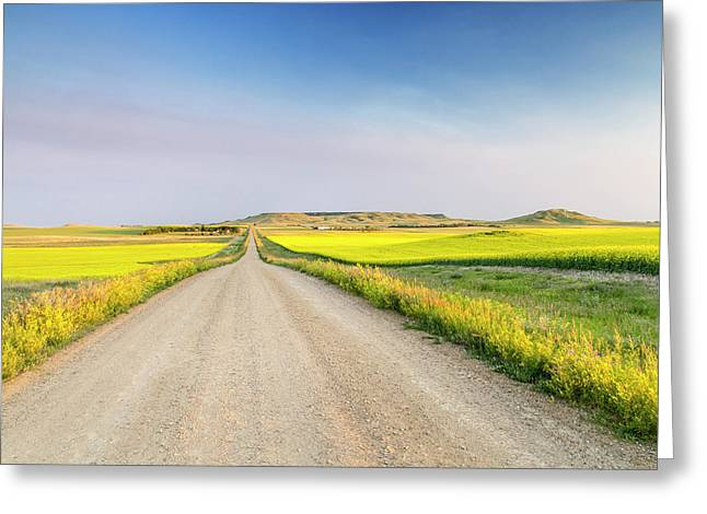 Gravel Road To West Rainy Butte Greeting Card by Chuck Haney