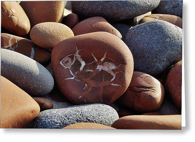Gray And Brown Stones Greeting Card by Kathi Mirto