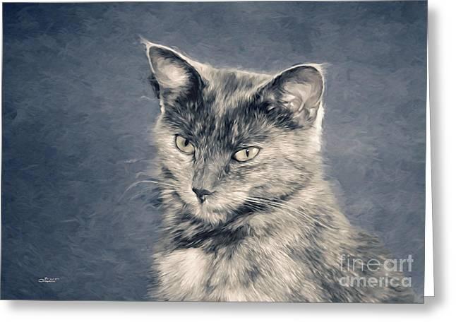 Gray Cat Greeting Card by Jutta Maria Pusl