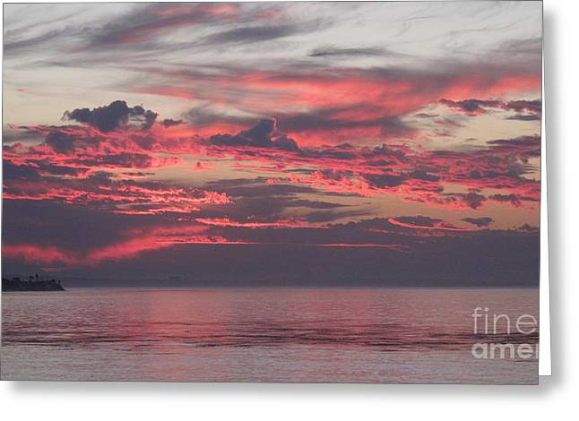 Gray Dawn Greeting Card by Maureen J Haldeman