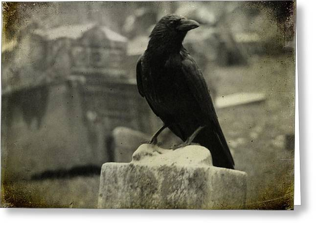 Gray Rainy Day Raven In Graveyard Greeting Card by Gothicrow Images