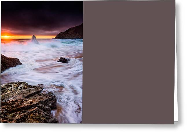 Gray Whale Cove Greeting Card by Alexis Birkill