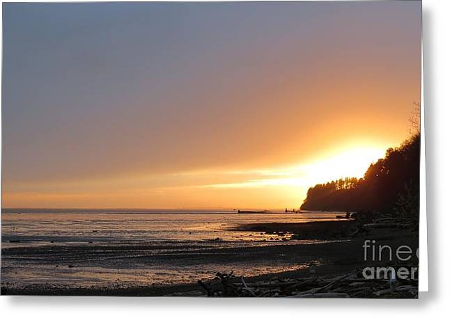 Grays Harbor Sunset II Greeting Card by Gayle Swigart