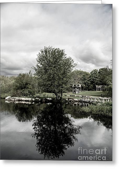 Grays Mill Pond Greeting Card
