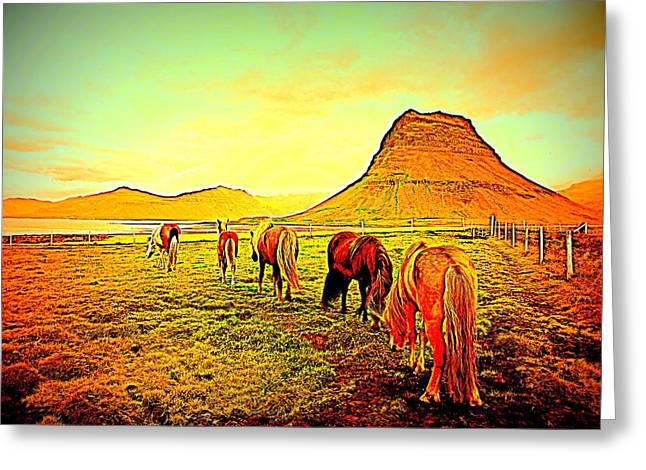 Happy To Be Grazing Again Greeting Card by Hilde Widerberg