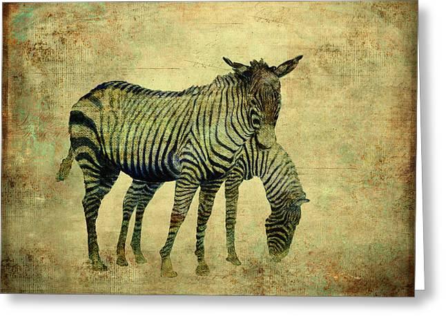 Grazing Zebras Greeting Card