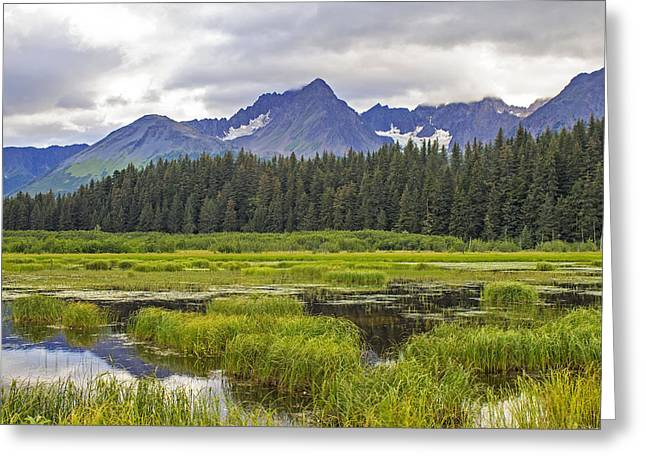 Great Alaskan Outdoors Greeting Card