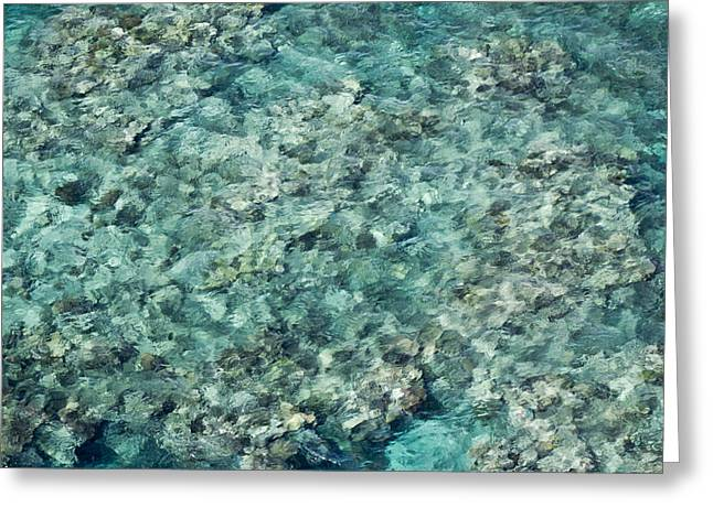 Great Barrier Reef Texture Greeting Card