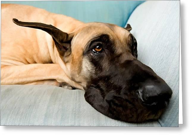 Great Dane Dog On Sofa Greeting Card by Lanjee Chee