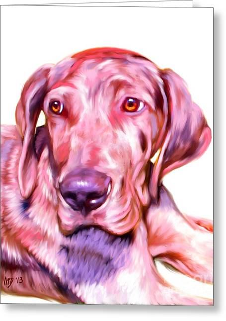 Great Dane Portrait Greeting Card by Iain McDonald