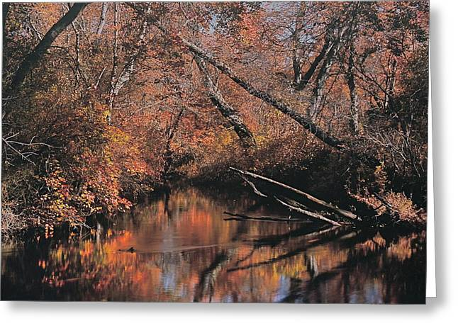 Great Egg Harbor River Greeting Card