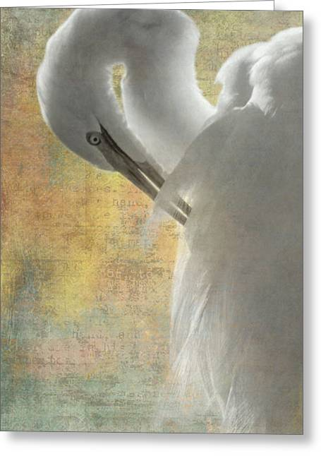 Great Egret Dream Greeting Card by Angie Vogel