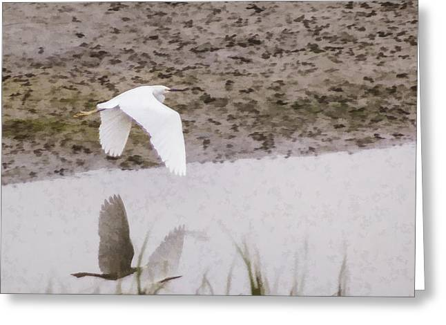 Great Egret Greeting Card by Photographic Art by Russel Ray Photos