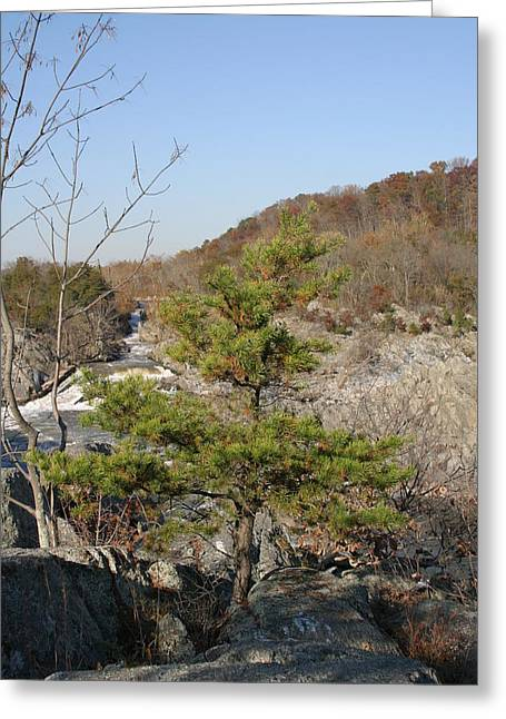 Great Falls Va - 12121 Greeting Card by DC Photographer