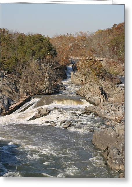 Great Falls Va - 12126 Greeting Card
