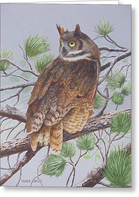 Great Horned Owl Greeting Card by James Lawler