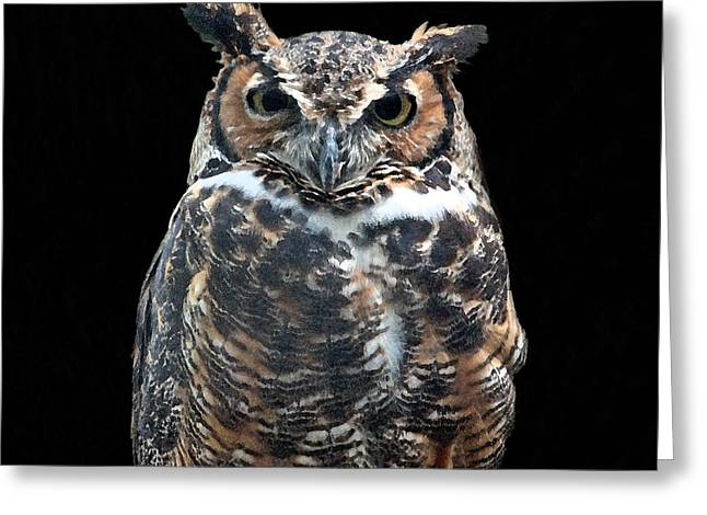 Great Horned Owl Greeting Card by Suzanne Gaff