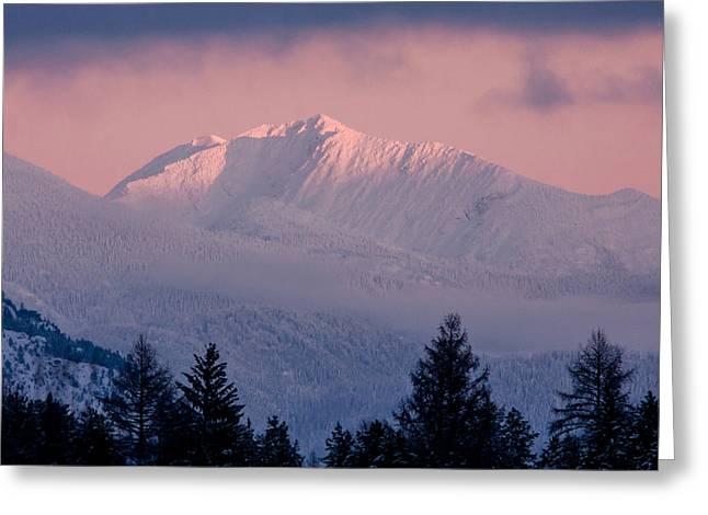 Greeting Card featuring the photograph Great Northern by Jack Bell