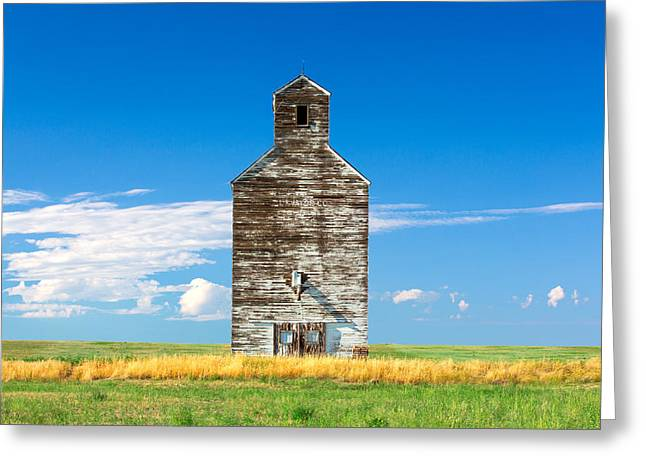 Great Plains Sentinel Greeting Card by Todd Klassy