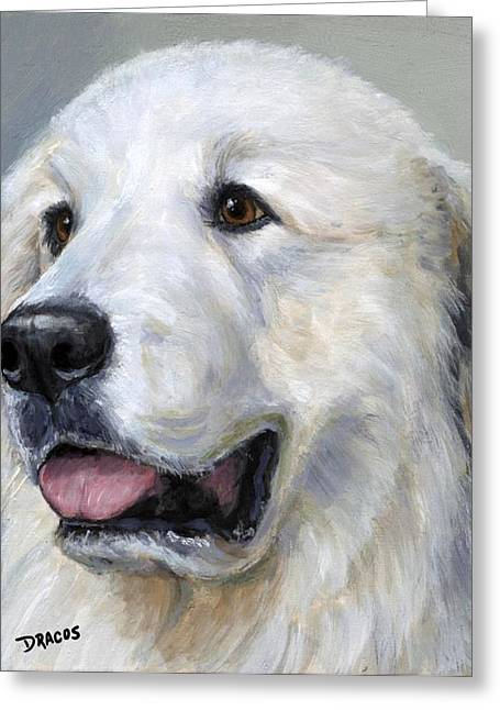 Great Pyrenees On Grey Greeting Card