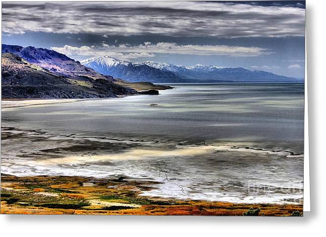 Great Salt Lake From Antelope Island Greeting Card