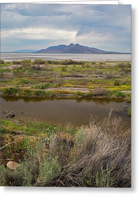 Great Salt Lake Greeting Card by Jim West