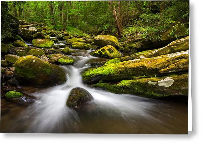 Great Smoky Mountains Gatlinburg Tn Lush Greeting Card by Dave Allen