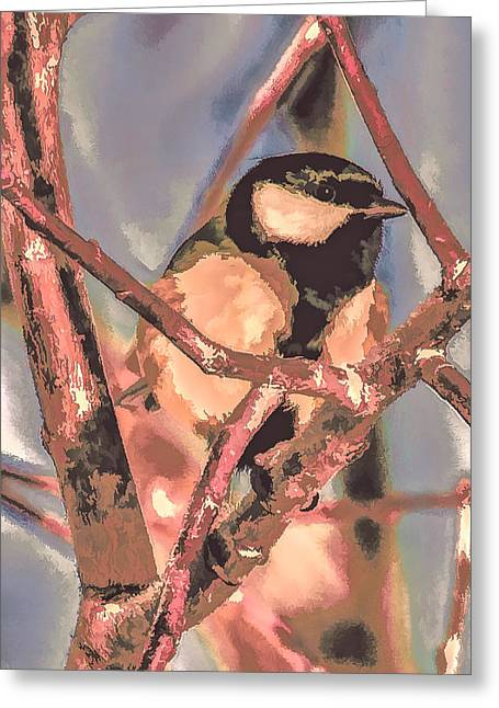 Great Tit  A  Leif Sohlman Greeting Card