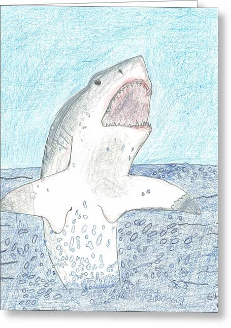 Greeting Card featuring the drawing Great White Breaching by Fred Hanna