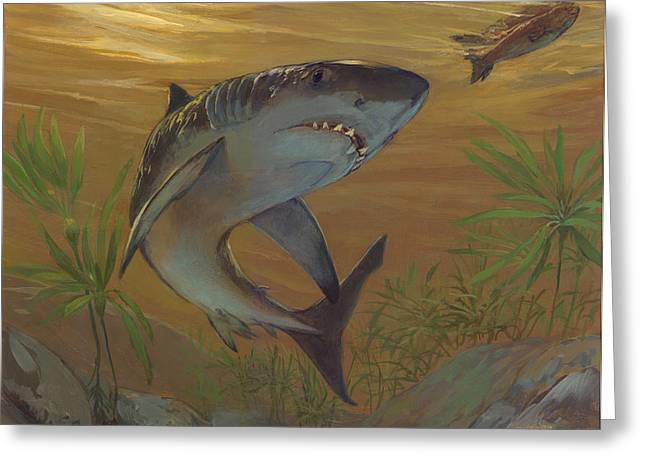 Great White Shark Greeting Card by ACE Coinage painting by Michael Rothman