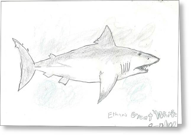 Greeting Card featuring the drawing Great White Shark by Fred Hanna