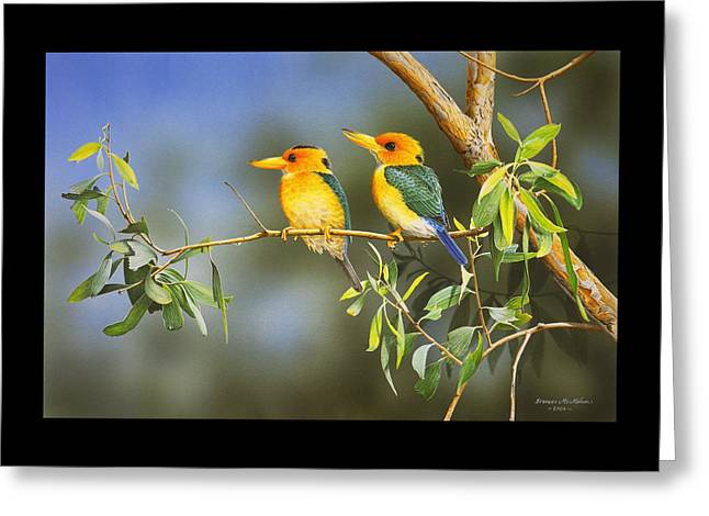 Green And Gold - Yellow-billed Kingfishers Greeting Card by Frances McMahon