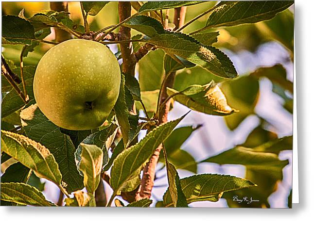 Green Apple Greeting Card by Barry Jones