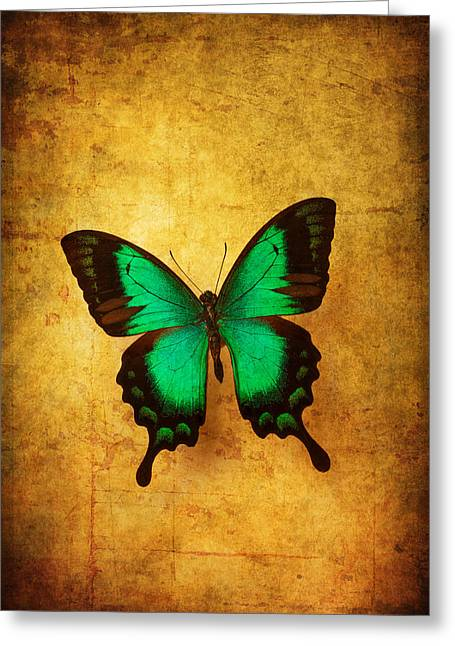 Green Butterfly Dreams Greeting Card by Garry Gay