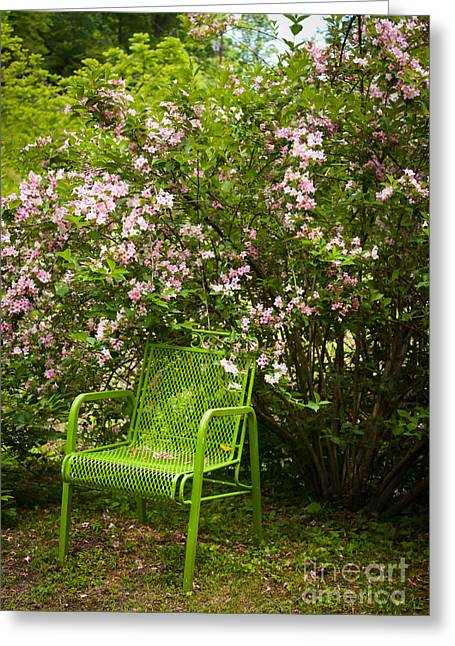 Green Chair Greeting Card by Lena Auxier