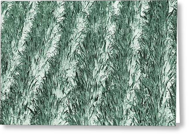Green Cornfield Greeting Card by Dan Sproul
