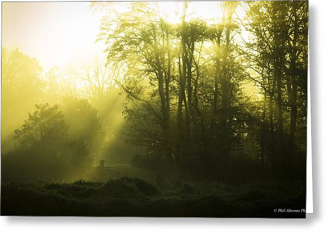 Greeting Card featuring the photograph Green Dawn by Phil Abrams
