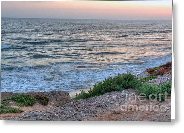 Green Dog Beach Coastline Greeting Card by Deborah Smolinske