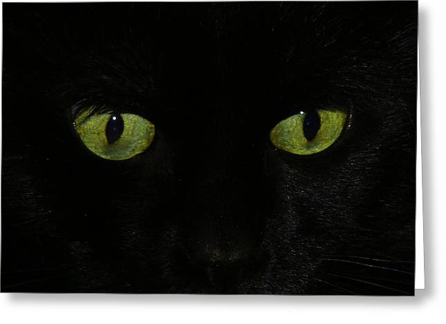 Green Eyes Greeting Card by Gothicrow Images