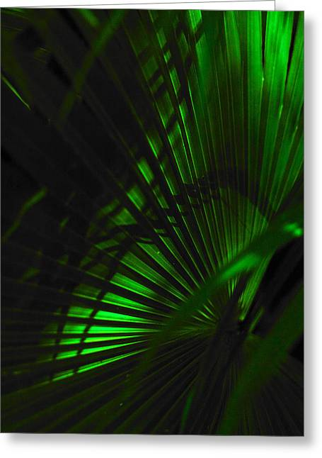 Greeting Card featuring the photograph Green Fan by Silke Brubaker