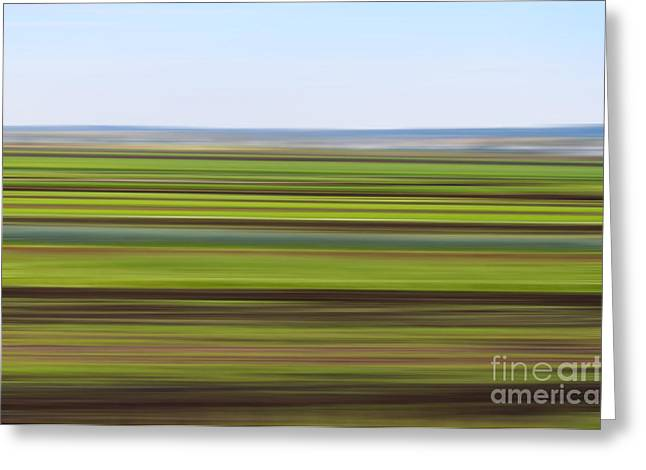 Green Field Abstract Greeting Card