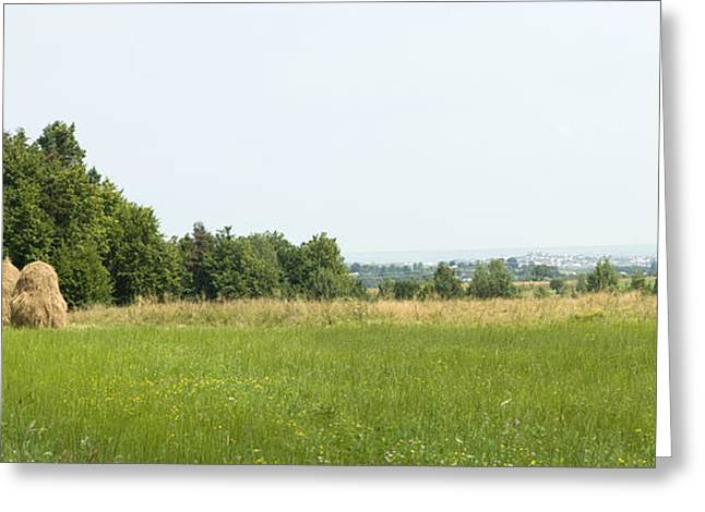 Green Field Panorama Greeting Card