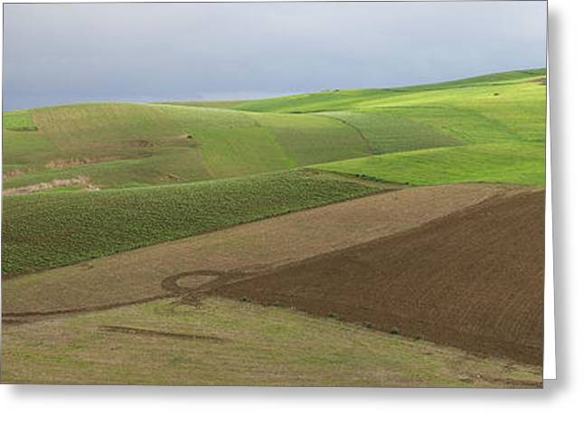 Green Fields Near Fes, Moulay Yacoub Greeting Card by Panoramic Images