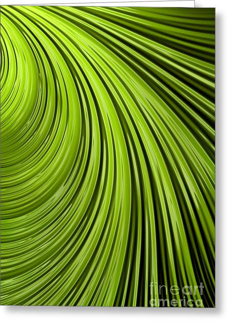 Green Flow Abstract Greeting Card by John Edwards