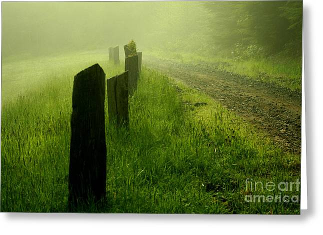 Green Fog Greeting Card