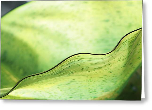 Green Glass Wave Greeting Card by John Vial