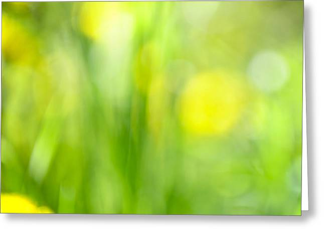 Green Grass With Yellow Flowers Abstract Greeting Card