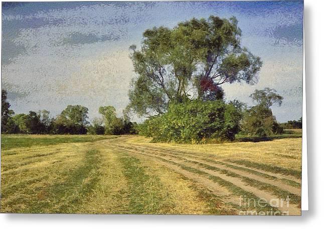 Green Landscape  Greeting Card by Odon Czintos